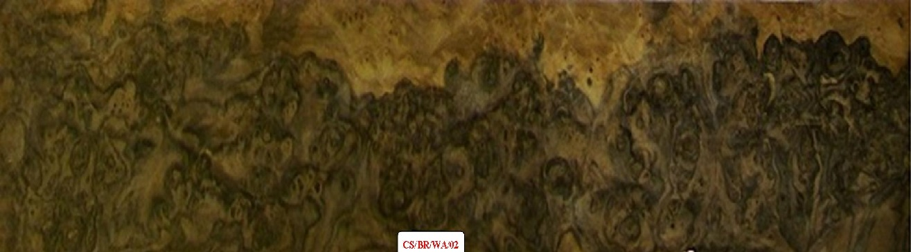 American Walnut Burr wood veneer