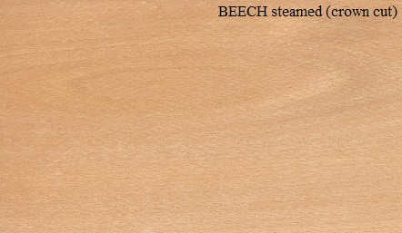 Beech Steamed crown wood veneer