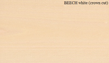 Beech White crown cut Wood Veneer