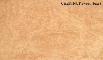 Sweet Chestnut Burr Wood Veneer