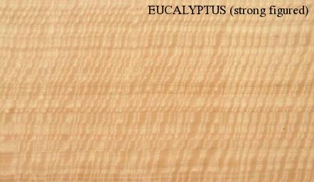 Eucalyptus Strong Figured Wood Veneer