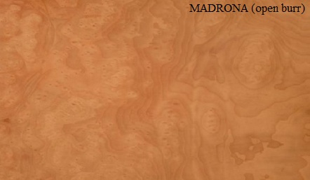 Madrona Open Burr Wood Veneer