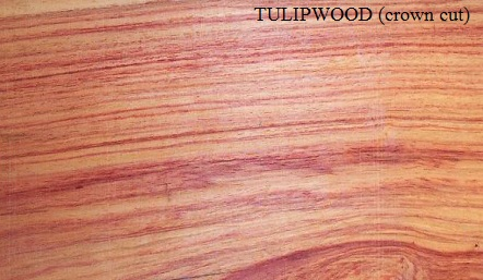 Tulipwood Crown Cut Wood Veneer