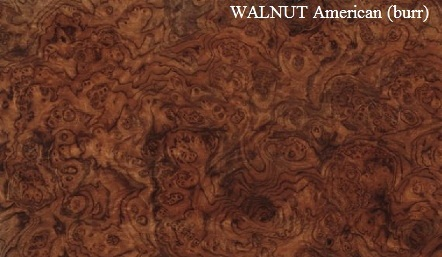Walnut American Burr Wood Veneer