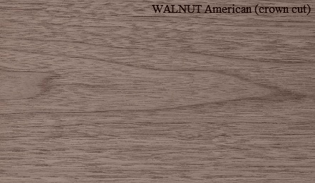 Walnut American Crown cut Wood Veneer